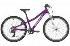 """Велосипед Bergamont 19' 24"""" Revox 24 Girl 31см 2019"""