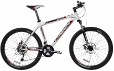Велосипед Comanche Backfire Disc 22""